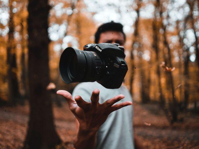 Fotografier i vildlivet